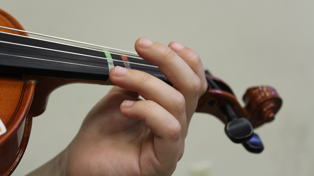 closeup shot of violin